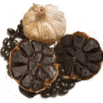 Agroalimentar Ajo Negro Ajo Chino Fresco Morado Beneficios de Ajo