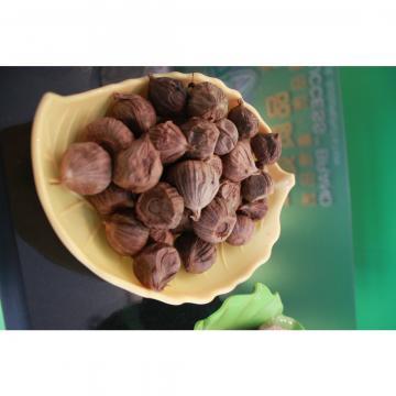 Diente de Ajo Negro Beneficios de Ajo Chino Fresco Poco Aliáceo