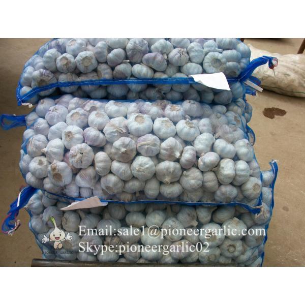5.0cm Ajo Blanco Normal Fresco Chino Empacado en Mallas de 10kgs #1 image